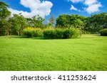 green lawn with blue sky in park | Shutterstock . vector #411253624