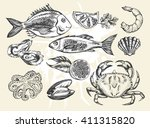 hand drawn set of various types ... | Shutterstock .eps vector #411315820