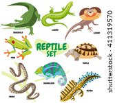 set of cold blooded reptiles  a ...