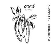 Vector Super Food Carob. Hand...