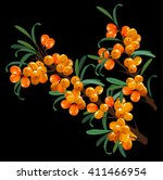 buckthorn branch composition | Shutterstock .eps vector #411466954