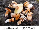 Fresh Wild Mushrooms On A...