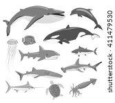 marine fauna set of aquatic... | Shutterstock .eps vector #411479530