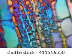 crystals of water ice under the ... | Shutterstock . vector #411516550