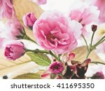 sakura  cherry blossom ... | Shutterstock . vector #411695350