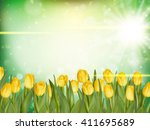 beautiful tulips on green bokeh ...
