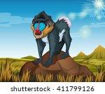 Baboon Standing On Rock...