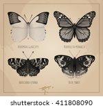 vector butterflies black and...