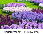 colorful purple and lilac...   Shutterstock . vector #411867196
