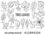 black pictograms set  tree... | Shutterstock . vector #411894334