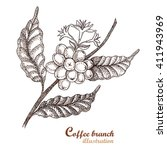 coffee branch.  | Shutterstock .eps vector #411943969