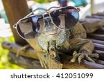 Cool Iguana With Sunglasses ...
