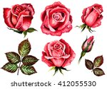 Stock photo watercolor set roses flowers buds green leaves closeup isolated on white background hand 412055530