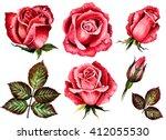 Watercolor Set  Roses Flowers ...