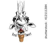 giraffe portrait with a ice... | Shutterstock .eps vector #412111384