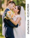 happy wedding couple  bride... | Shutterstock . vector #412141984