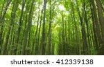 a rural road through a forest... | Shutterstock . vector #412339138