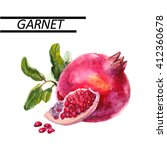 garnet watercolor. hand drawn... | Shutterstock . vector #412360678
