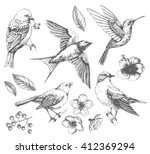 set of  of birds and flowers ... | Shutterstock .eps vector #412369294