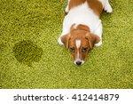 puppy jack russell terrier... | Shutterstock . vector #412414879