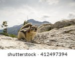 Small photo of Golden-mantled ground squirrel (Callospermophilus lateralis) posing on top of a rocky outcrop in the Canadian rockies, mountainous landscape in the background.
