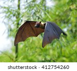 flying fox in full flight | Shutterstock . vector #412754260