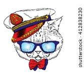 funny cat in the captain's cap. ... | Shutterstock .eps vector #412838230