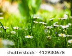 daisies on a background of... | Shutterstock . vector #412930678