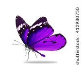 beautiful purple monarch... | Shutterstock . vector #412930750