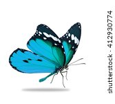 beautiful blue monarch... | Shutterstock . vector #412930774