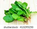 juicy fresh spinach leaves on...   Shutterstock . vector #413295250