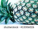 vintage pineapple in a... | Shutterstock . vector #413306026