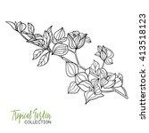 tropical plant. vector...   Shutterstock .eps vector #413518123