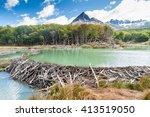Beaver Dam At Tierra Del Fuego...