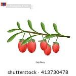 mongolia fruit  illustration of ...