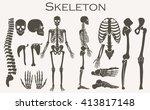 human bones skeleton silhouette ... | Shutterstock .eps vector #413817148
