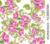 watercolor blooming bind weed... | Shutterstock . vector #413883580