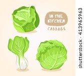 cabbage and lettuce   vegetable ... | Shutterstock .eps vector #413965963