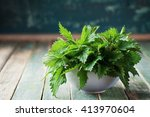 Young Nettle Leaves In Pot On...