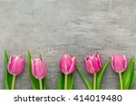 pink tulips on a grey... | Shutterstock . vector #414019480