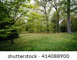 trees at notre dame of maryland ... | Shutterstock . vector #414088900