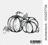 doodle pumpkins. hand drawn ink ... | Shutterstock .eps vector #414207736