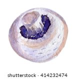 watercolor image of champignon... | Shutterstock . vector #414232474