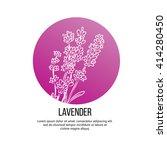 lavender flowers vector... | Shutterstock .eps vector #414280450