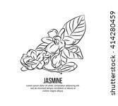 jasmine flowers vector... | Shutterstock .eps vector #414280459