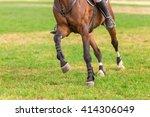 Horse Legs At Riding Arena.