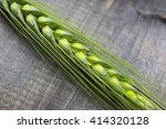 young wheat ears isolated on a... | Shutterstock . vector #414320128