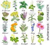 Medicinal And Healing Herbs...