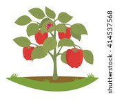 Bush Pepper Fruits. Vector...
