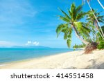 tropical beach with coconut... | Shutterstock . vector #414551458